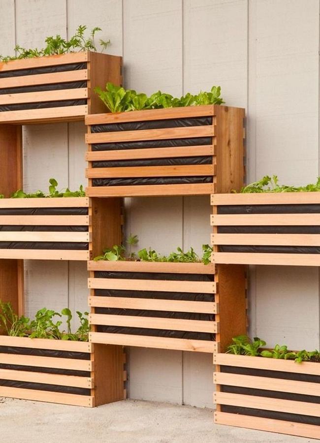17 hệ thống trồng cây trong nhà vô cùng thông minh cho người bận rộn - Ảnh 16.