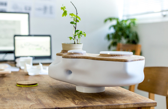 15 thiết kế chậu trồng cây gia vị thông minh và hiện đại cho những không gian nhỏ - Ảnh 7.