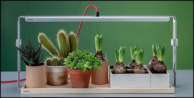 15 thiết kế chậu trồng cây gia vị thông minh và hiện đại cho những không gian nhỏ - Ảnh 10.