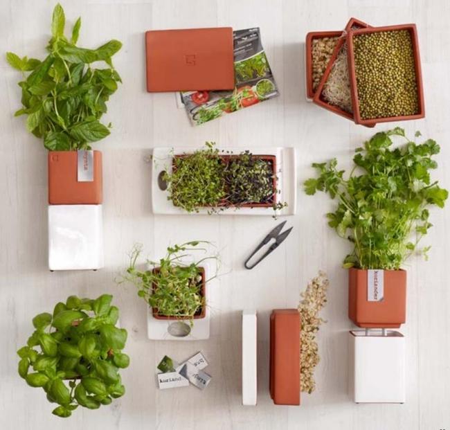 15 thiết kế chậu trồng cây gia vị thông minh và hiện đại cho những không gian nhỏ - Ảnh 12.