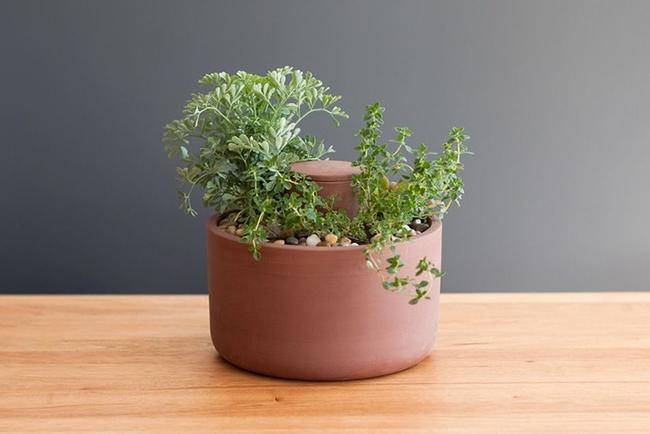 15 thiết kế chậu trồng cây gia vị thông minh và hiện đại cho những không gian nhỏ - Ảnh 16.
