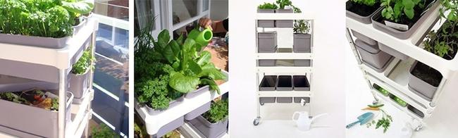 15 thiết kế chậu trồng cây gia vị thông minh và hiện đại cho những không gian nhỏ - Ảnh 18.