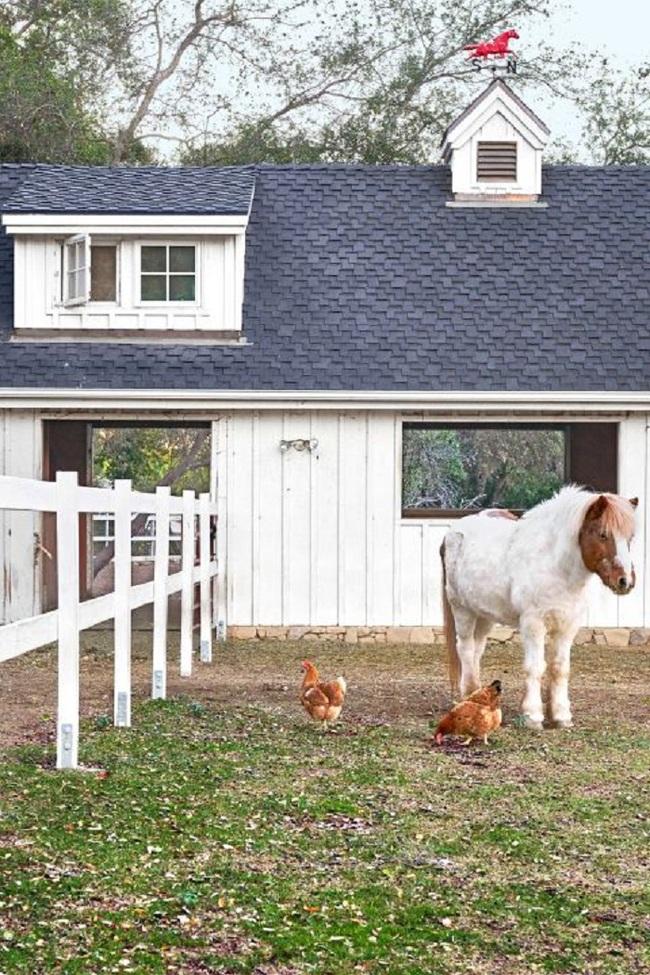 Lạc trôi về ngôi nhà ở đồng quê để biết bạn đã bỏ lỡ những điều tuyệt của cuộc sống - Ảnh 12.