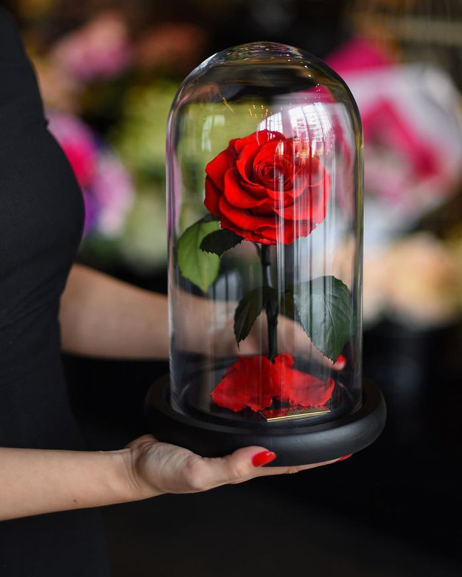 Chiêm ngưỡng những bông hồng vĩnh cửu đặt trong lồng kính y như truyện cổ tích - Ảnh 1.