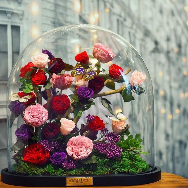 Chiêm ngưỡng những bông hồng vĩnh cửu đặt trong lồng kính y như truyện cổ tích - Ảnh 3.