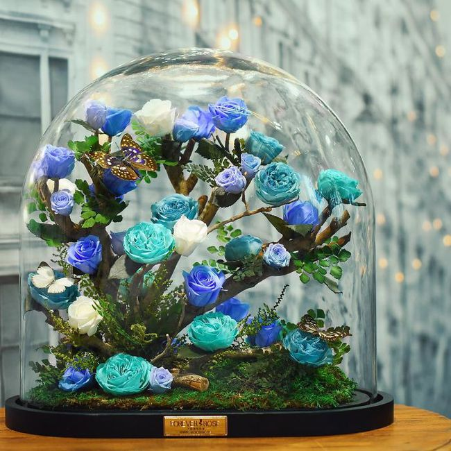 Chiêm ngưỡng những bông hồng vĩnh cửu đặt trong lồng kính y như truyện cổ tích - Ảnh 5.