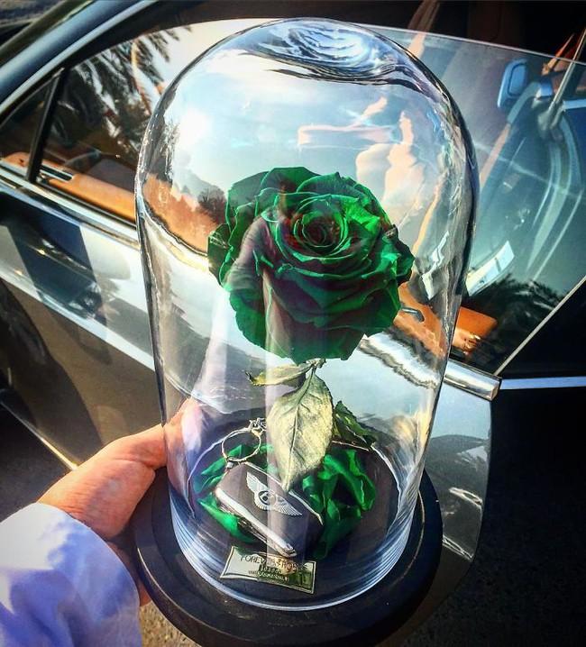 Chiêm ngưỡng những bông hồng vĩnh cửu đặt trong lồng kính y như truyện cổ tích - Ảnh 6.