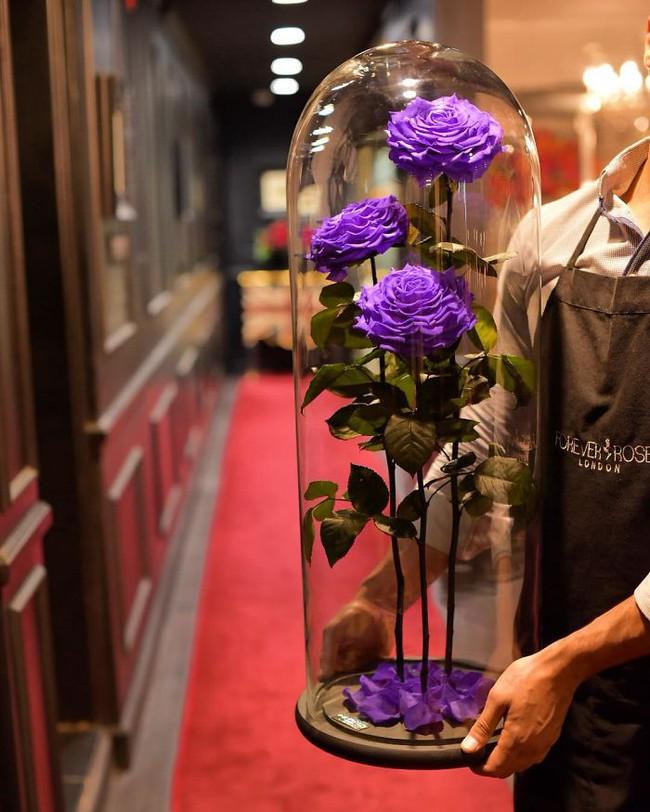 Chiêm ngưỡng những bông hồng vĩnh cửu đặt trong lồng kính y như truyện cổ tích - Ảnh 11.