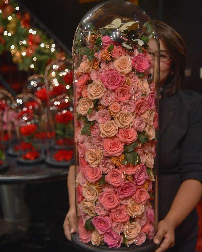 Chiêm ngưỡng những bông hồng vĩnh cửu đặt trong lồng kính y như truyện cổ tích - Ảnh 12.