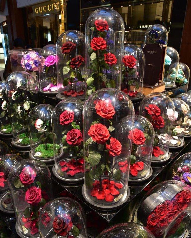 Chiêm ngưỡng những bông hồng vĩnh cửu đặt trong lồng kính y như truyện cổ tích - Ảnh 14.