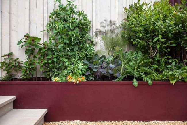 10 cách để hô biến sân vườn nhỏ trước nhà trở nên lung linh - Ảnh 3.