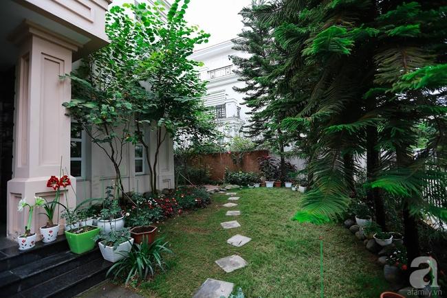 Biệt thự sân vườn sở hữu những khoảng xanh đẹp đến từng chi tiết của vợ chồng KTS ở Hà Nội - Ảnh 4.