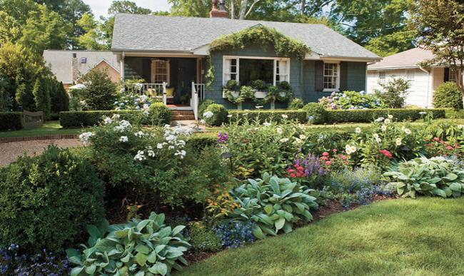 4 ý tưởng trang trí sân vườn bằng các loài hoa cho mùa hè rực rỡ - Ảnh 6.