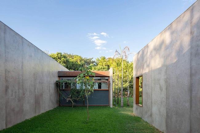 Ngôi nhà đặc biệt khi thiết kế thảm thực vật dày đặc bao quanh và nội thất độc đáo theo phong cách retro - Ảnh 3.