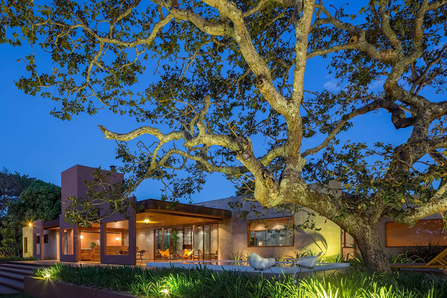 Ngôi nhà đặc biệt khi thiết kế thảm thực vật dày đặc bao quanh và nội thất độc đáo theo phong cách retro - Ảnh 5.