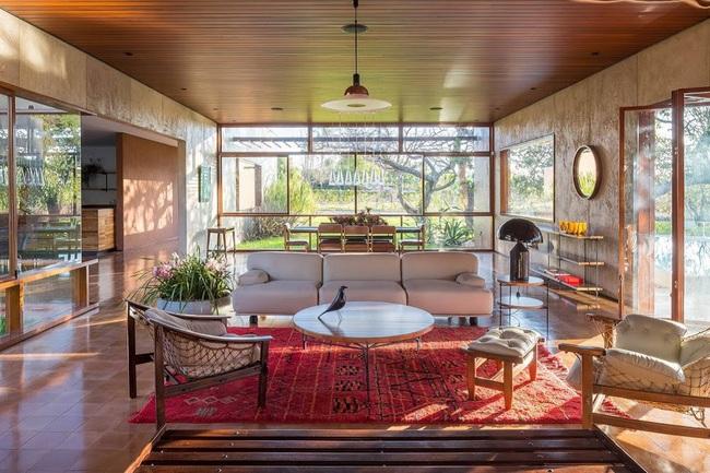 Ngôi nhà đặc biệt khi thiết kế thảm thực vật dày đặc bao quanh và nội thất độc đáo theo phong cách retro - Ảnh 8.