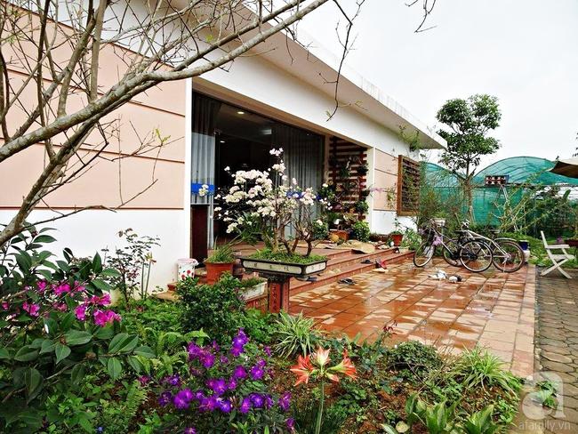 Bỏ việc quản lý và căn nhà ở nội thành Hà Nội, vợ chồng ra ngoại thành xây nhà vườn đẹp như cổ tích - Ảnh 2.