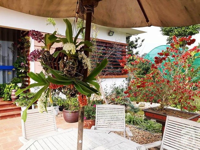 Bỏ việc quản lý và căn nhà ở nội thành Hà Nội, vợ chồng ra ngoại thành xây nhà vườn đẹp như cổ tích - Ảnh 19.