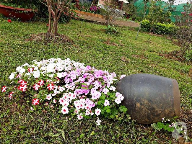 Bỏ việc quản lý và căn nhà ở nội thành Hà Nội, vợ chồng ra ngoại thành xây nhà vườn đẹp như cổ tích - Ảnh 21.