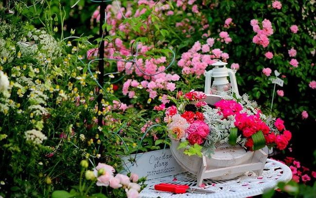 Khu vườn hoa hồng đẹp như cổ tích trên sân thượng của cô sinh viên trẻ - Ảnh 11.