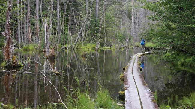 Có một Alaska hoang dã và đẹp phóng khoáng khiến ai cũng ước một lần được đặt chân - Ảnh 20.