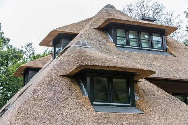 Bạn có tò mò ngôi nhà như thế nào mà được xếp hạng top 1 tại Hà Lan? - Ảnh 10.