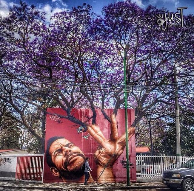Nghệ thuật đường phố siêu sáng tạo nhờ kết hợp với thiên nhiên xung quanh - Ảnh 13.