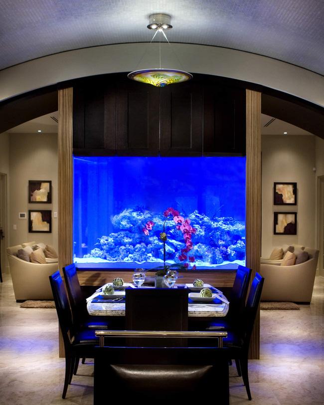 Bể cá được lồng ghép vào nội thất ngôi nhà, bạn đã biết xu hướng trang trí thịnh hành nhất hiện nay chưa? - Ảnh 6.