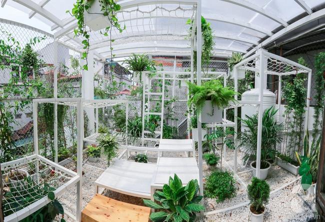 """Khu vườn """"điều hòa"""" không sợ nắng mùa hè của chủ nhân 9x ở Thái Thịnh, Hà Nội - Ảnh 1."""