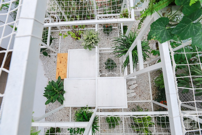 """Khu vườn """"điều hòa"""" không sợ nắng mùa hè của chủ nhân 9x ở Thái Thịnh, Hà Nội - Ảnh 4."""