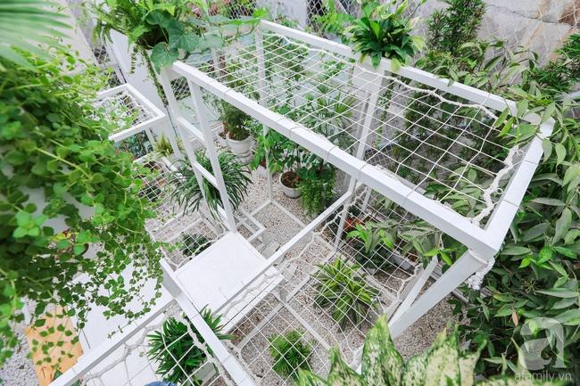 """Khu vườn """"điều hòa"""" không sợ nắng mùa hè của chủ nhân 9x ở Thái Thịnh, Hà Nội - Ảnh 9."""