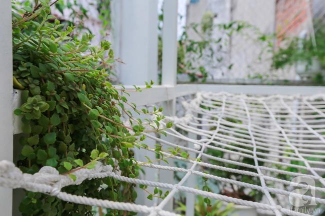 """Khu vườn """"điều hòa"""" không sợ nắng mùa hè của chủ nhân 9x ở Thái Thịnh, Hà Nội - Ảnh 14."""