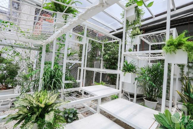 """Khu vườn """"điều hòa"""" không sợ nắng mùa hè của chủ nhân 9x ở Thái Thịnh, Hà Nội - Ảnh 15."""