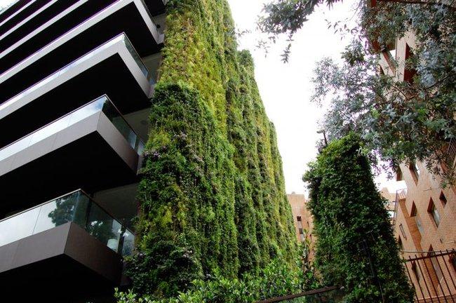Tòa nhà phủ đầy cây xanh ẩn chứa những điều tuyệt vời khiến ai cũng ao ước sở hữu - Ảnh 2.