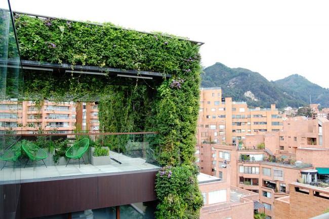 Tòa nhà phủ đầy cây xanh ẩn chứa những điều tuyệt vời khiến ai cũng ao ước sở hữu - Ảnh 3.