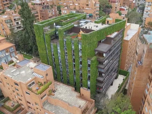 Tòa nhà phủ đầy cây xanh ẩn chứa những điều tuyệt vời khiến ai cũng ao ước sở hữu - Ảnh 5.