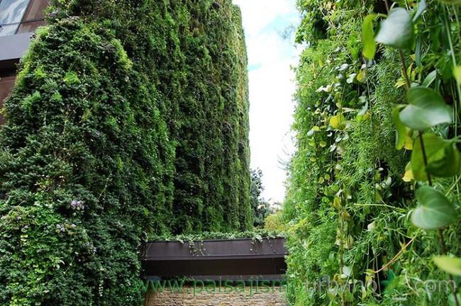 Tòa nhà phủ đầy cây xanh ẩn chứa những điều tuyệt vời khiến ai cũng ao ước sở hữu - Ảnh 7.