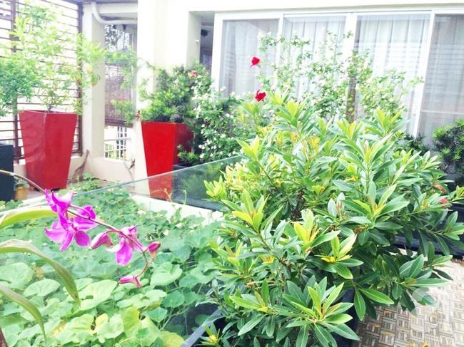 Khu vườn trên sân thượng rộng tới 200m² bạt ngàn rau quả sạch của nữ doanh nhân Sài Thành - Ảnh 9.