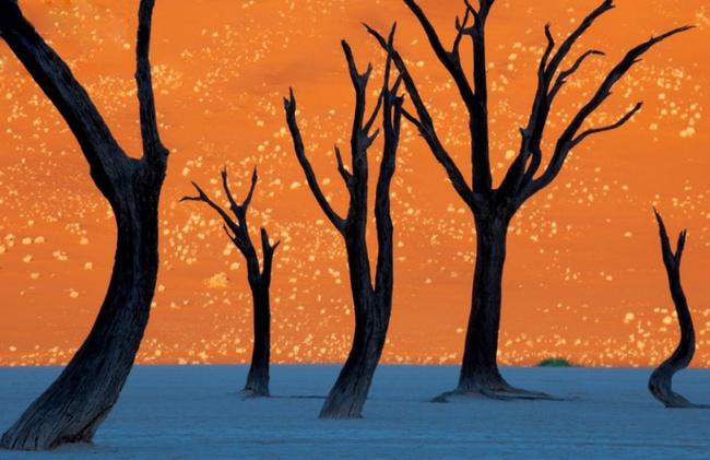10 tuyệt tác kỳ vĩ của thiên nhiên khiến bạn phải tròn mắt ngạc nhiên - Ảnh 3.