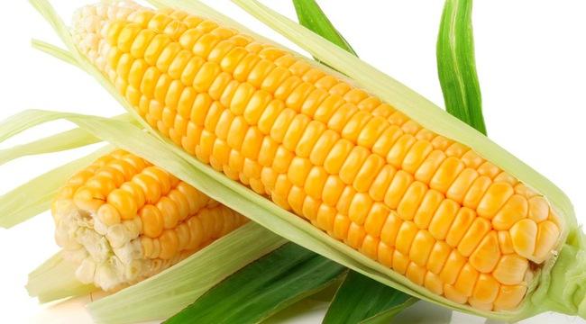 Thực phẩm biến đổi gen - Nên hay không nên ăn? - Ảnh 1.