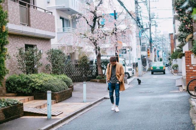 Ra đây mà xem người ta kéo nhau sang Nhật ngắm hoa anh đào hết rồi! - Ảnh 17.