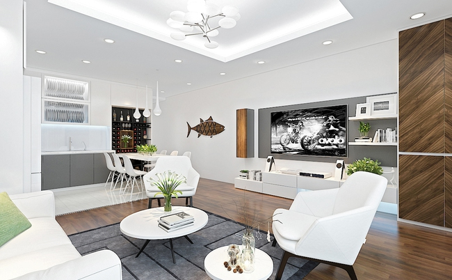 Tư vấn thiết kế phòng khách mang phong cách hiện đại với tổng chi phí chưa đến 30 triệu đồng - Ảnh 3.
