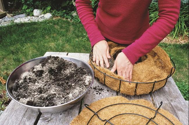 Ý tưởng làm vòng treo trang trí vườn vừa đơn giản vừa đẹp từ những cây mọng nước  - Ảnh 3.
