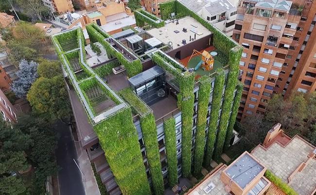 Tòa nhà phủ đầy cây xanh ẩn chứa những điều tuyệt vời khiến ai cũng ao ước sở hữu - Ảnh 1.