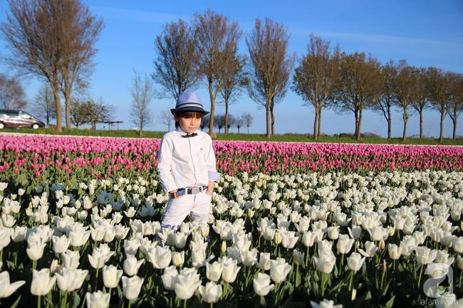 Vẻ đẹp cuốn hút của hoàng tử lai mang 2 dòng máu Việt – Hà Lan - Ảnh 2.