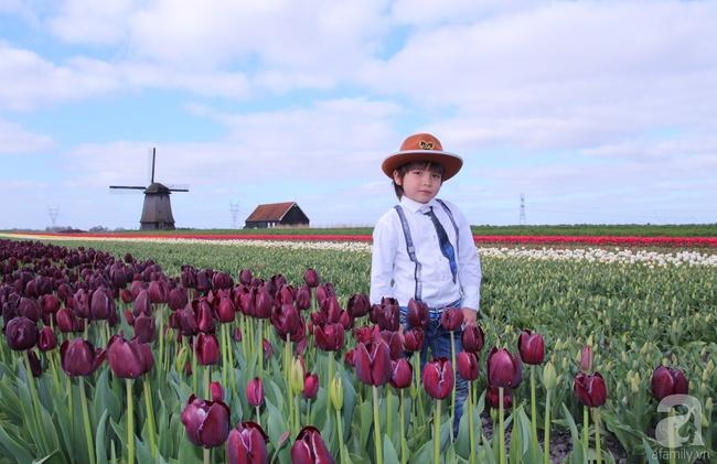Vẻ đẹp cuốn hút của hoàng tử lai mang 2 dòng máu Việt – Hà Lan - Ảnh 3.