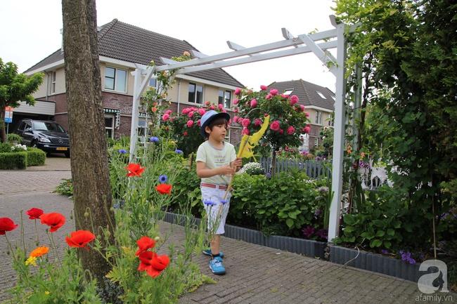 Vẻ đẹp cuốn hút của hoàng tử lai mang 2 dòng máu Việt – Hà Lan - Ảnh 23.