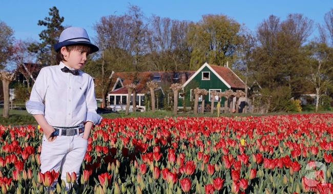 Vẻ đẹp cuốn hút của hoàng tử lai mang 2 dòng máu Việt – Hà Lan - Ảnh 1.