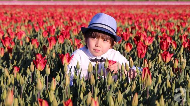 Vẻ đẹp cuốn hút của hoàng tử lai mang 2 dòng máu Việt – Hà Lan - Ảnh 27.