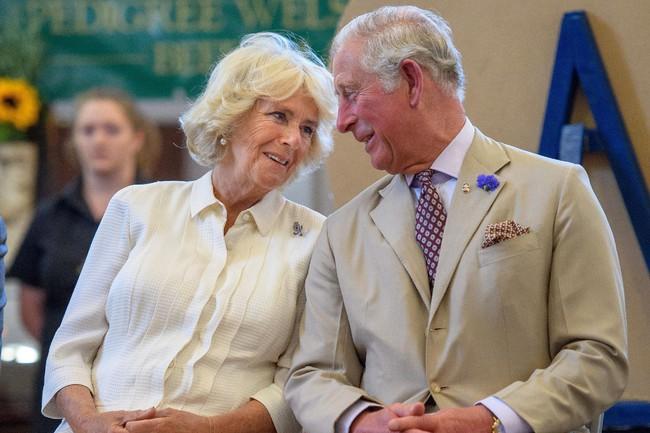 Khoảnh khắc ngọt ngào của 4 cặp đôi nổi tiếng nhất hoàng gia Anh: Hiếm khi thể hiện nhưng vẫn làm công chúng ghen tị - Ảnh 8.